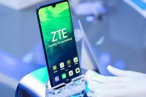 Cùng bị cấm vận nhưng ZTE đã vượt qua Huawei về điện thoại 5G