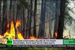 Máy bay Nga trút 'mưa bom nước' giải cứu rừng ở Siberia