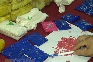 Lai Châu: Triệt phá 151 vụ buôn bán ma túy, bắt giữ 183 đối tượng
