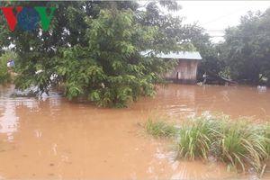 Đắk Lắk nỗ lực cứu hộ, di dời dân cư vùng lũ