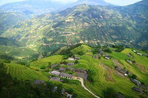 'Thung lũng' homestay Quảng Hạ