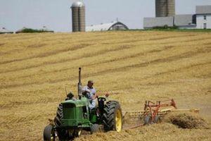 'Lá bài' nông sản trong thương chiến Mỹ - Trung mạnh cỡ nào?