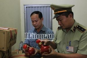 Quảng Ninh: Phát hiện gần 1.000 vụ vi phạm trong lĩnh vực thuế nội địa