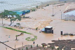Căng dây cáp qua dòng lũ giải cứu người dân bị mắc kẹt ở Lâm Đồng