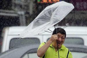 Bão Lekima đổ bộ vào Trung Quốc với sức gió 209 km / giờ