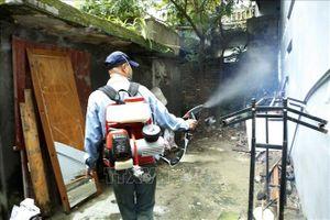 Hà Nội chủ động phòng, chống bệnh sốt xuất huyết trong trường học