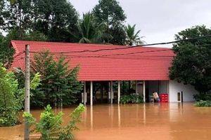 Đồng Nai: Nước lũ dâng cao 1 người mất tích, di dời dân khẩn cấp