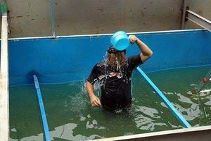 Chuyên gia Nhật Bản tắm mình dưới nước sông Tô Lịch