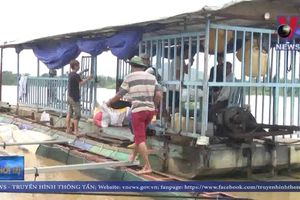 Thủy điện Đồng Nai xả lũ, một người mất tích