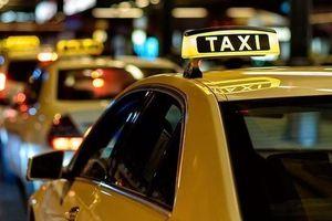 Doanh nghiệp taxi truyền thống muốn đối thoại với Thủ tướng về quy định 'đeo mào' cho xe hợp đồng điện tử