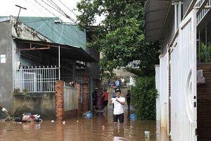 Tây Nguyên, Đồng Nai: Chín người chết, mất tích do lũ