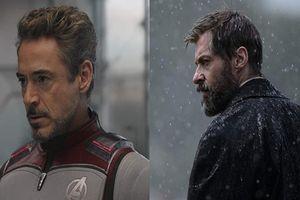 Cái chết của Tony Stark được đặt lên bàn cân với Logan