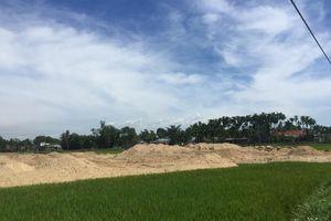 Quảng Ngãi: Chưa được giao đất, doanh nghiệp ngang nhiên san lấp mặt bằng