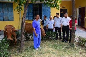 Trao tặng Dự án 'Ngân hàng bò' cho người tâm thần tại Trung tâm Bảo trợ xã hội Thừa Thiên Huế