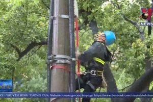 Bão Lekima gây thiệt hại nặng tại Trung Quốc