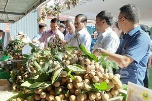 Thị trường rằm tháng 7: Trái cây nội hút khách