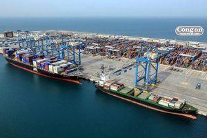 Cảng Vân Phong được đề cử xác lập Kỷ lục Việt Nam