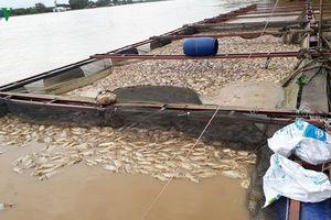 Đồng Nai: Hai người tử vong, thiệt hại hàng trăm tỉ đồng do mưa lũ