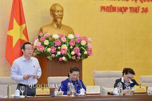 Ủy ban Chứng khoán Nhà nước: Theo mô hình nào cũng phải đảm đảm tính độc lập