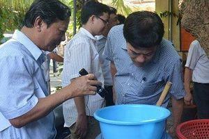 2.100 người mắc sốt xuất huyết, Hà Nội yêu cầu lãnh đạo, công an tham gia phun hóa chất diệt muỗi