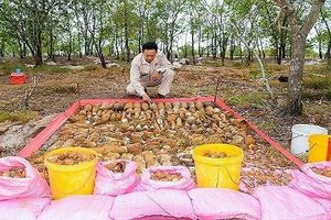 Phát hiện hai hầm đạn chứa hơn 1.400 vật liệu nổ tại Quảng Trị