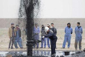 Giá xăng dầu hôm nay 14/8 đồng loạt tăng mạnh