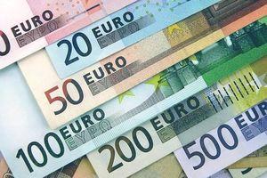 Tỷ giá Euro hôm nay (14/8): Giá Euro trong nước đồng loạt sụt giảm