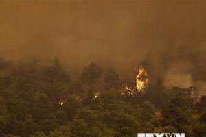 Cận cảnh Hy Lạp dùng trực thăng ngăn cháy rừng