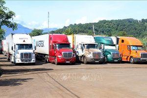 Ùn tắc 550 xe container chở thanh long tại Cửa khẩu Lào Cai