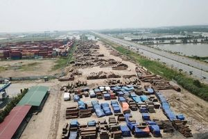 Vì sao chưa xử lý bãi gỗ vi phạm tại KCN Minh Phương?
