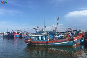Ngư trường cạn kiệt, tàu cá nằm bờ, ngư dân nợ nần chồng chất
