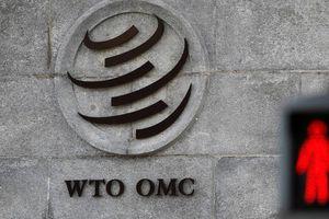 Nga lên tiếng về nguy cơ khôn lường khi Mỹ rời WTO