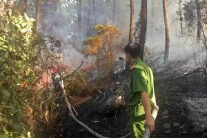 Huế: Nghi vấn đốt vàng mã ngày rằm tháng 7 gây cháy rừng lớn