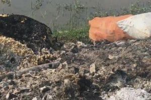 Kiến An (Hải Phòng): Cần ngăn chặn tình trạng đốt rác thải y tế và linh kiện điện tử tại phường Tràng Minh