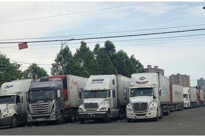 Thanh long xuất khẩu sang Trung Quốc bị dồn ứ tại Lào Cai