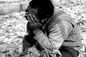Trung Quốc bị thiên địch hoành hành khiến người nông dân khóc ròng