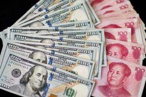 Thương chiến tiền tệ Mỹ - Trung: 'Sức ép' đè nặng lên doanh nghiệp xuất khẩu Việt