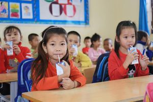 Chương trình sữa học đường: Chờ Bộ Y tế đến bao giờ?
