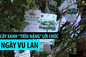 Cây xanh trong chùa 'trĩu nặng' lời cầu chúc Ngày Vu lan