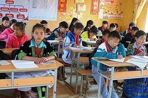 Giáo dục Tiểu học: Năm 'nước rút' để chuẩn bị các điều kiện cho chương trình mới