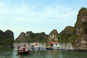 Tour du lịch giá rẻ - Bài 1: Chiêu bài hấp dẫn khách Trung Quốc