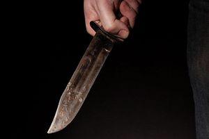 Bị phát hiện trộm cắp, 'đạo chích' đâm chết 2 vợ chồng chủ nhà