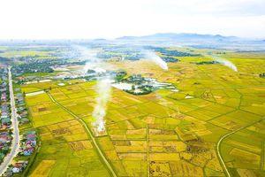 Xây dựng NTM vùng đồng bằng sông Hồng và Bắc Trung Bộ: Những kinh nghiệm từ thực tiễn