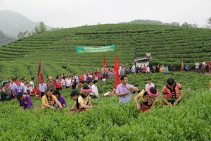 Thái Nguyên: Tạo động lực cho kinh tế tập thể, hợp tác xã phát triển