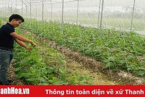 38.588 tỷ đồng cho vay phục vụ phát triển nông nghiệp, nông thôn