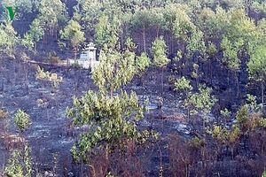 Cháy rừng liên tiếp xảy ra tại tỉnh Quảng Nam