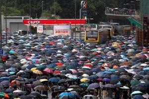 'Biển ô' tràn xuống đường biểu tình ở Hong Kong