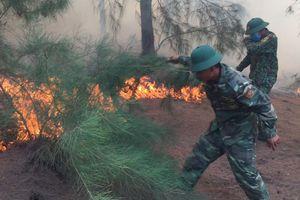 Cháy rừng phòng hộ ven biển tại Phú Yên