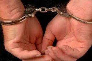 Bắt giam nhân viên ngân hàng lừa đảo chiếm đoạt hàng chục tỉ đồng