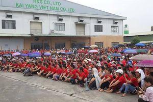 Hải Phòng: Công ty TNHH KaiYang sẽ hoạt động trở lại vào ngày mai (20/8)